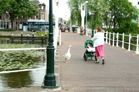 Apparently everyone goes shopping on 'shopping day' in Leiden.