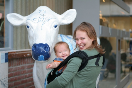 Unlike Shira, we only get this close to plastic cows.